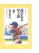 遥かなる甲子園 4(アクションコミックス)