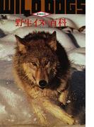 野生イヌの百科 第3版