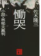 【期間限定価格】慟哭 小説・林郁夫裁判