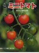 ミニトマト 実のなる植物の成長 (科学のアルバム・かがやくいのち)