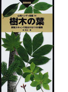 樹木の葉 実物スキャンで見分ける1100種類 画像検索