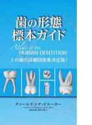 歯の形態標本ガイド 人の歯の詳細図版集決定版!
