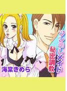 ツンデレメイド秘密調教(4)(ミッシィヤングラブコミックス)