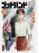 ゴッドハンド輝 28 (講談社漫画文庫)(講談社漫画文庫)