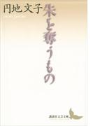 朱を奪うもの(講談社文芸文庫)