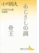 あじさしの洲 骨王(講談社文芸文庫)