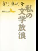 私の文学放浪(講談社文芸文庫)