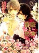 薔薇と接吻(幻冬舎ルチル文庫)