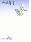 花影(講談社文芸文庫)