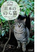 日本ののら猫