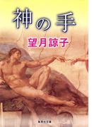 神の手(木部美智子シリーズ)(集英社文庫)