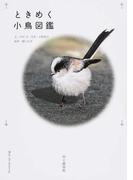 ときめく小鳥図鑑