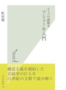 コトバの謎解き ソシュール入門(光文社新書)