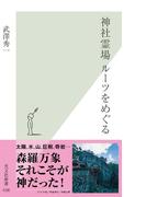 神社霊場 ルーツをめぐる(光文社新書)