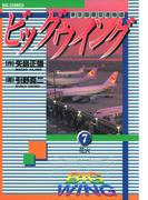 ビッグウイング 7(ビッグコミックス)