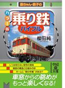 【期間限定価格】カラー版 「乗り鉄」バイブル