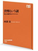 貨幣という謎 金(きん)と日銀券とビットコイン(NHK出版新書)