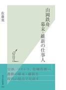 山岡鉄舟 幕末・維新の仕事人(光文社新書)