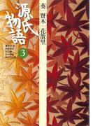 源氏物語 3 古典セレクション(古典セレクション)