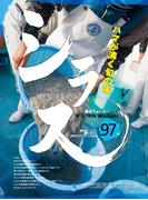 海の宝石! 神奈川のシラス名店 地元誌厳選97店(デジタルWalker)
