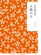 太陽の子(角川文庫)