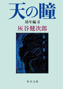 天の瞳 幼年編II(角川文庫)
