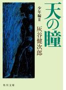 天の瞳 少年編II(角川文庫)