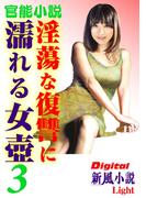 【官能小説】淫蕩な復讐に濡れる女壺03(Digital新風小説Light)