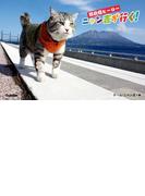 野良猫ヒーロー ニャン吉が行く!