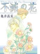 不滅の花(ルチルコレクション)
