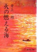 火の燃える海(集英社文庫)