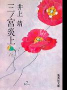 三ノ宮炎上(集英社文庫)