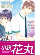 小説花丸 Vol.3(小説花丸)
