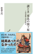 謎とき 東北の関ヶ原~上杉景勝と伊達政宗~(光文社新書)