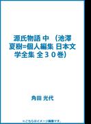 源氏物語 中 (池澤夏樹=個人編集 日本文学全集 全30巻)