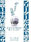 【期間限定価格】『フリーターだからできる年収1千万円超の裏ワザ』
