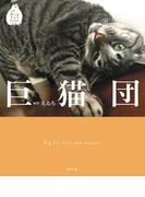 巨猫団(幻冬舎単行本)