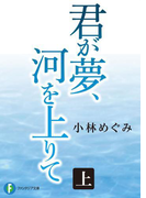 君が夢、河を上りて 上(富士見ファンタジア文庫)
