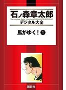 【セット商品】【10%割引】石ノ森章太郎デジタル大全 第5期[追う者] セット