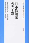 日本鉄鋼業の光と影 (シリーズ企業・経営の現場から)