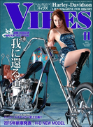 VIBES【バイブズ】2014年11月号(VIBES)