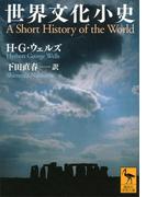 世界文化小史(講談社学術文庫)