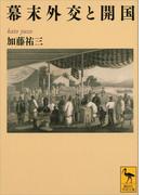 幕末外交と開国(講談社学術文庫)