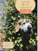 老犬ものがたり まいにちがシアワセ記念日 フォトエッセイ (ラピュータブックス)(ラピュータブックス)