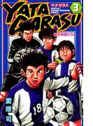 YATAGARASU ─蒼き仲間たち─(3)
