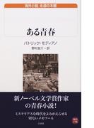 ある青春 (白水Uブックス 海外小説永遠の本棚)