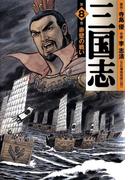 三国志 8(フラッパーシリーズ)