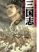 三国志 14(フラッパーシリーズ)