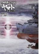 宇宙戦艦ヤマト2199星巡る方舟