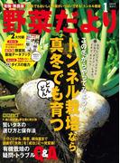野菜だより2015年1月号